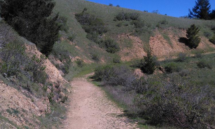 Chemin dans les montagnes de Spirit Rock, un centre de retraite en Californie