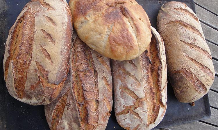 Un pain délicieux et magnifique